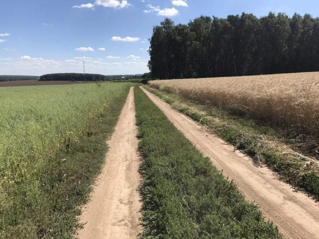 Дорога на Даровое