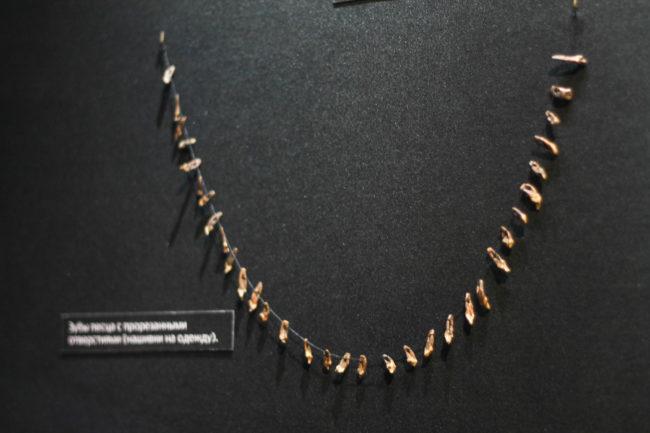 Зубцы песца с прорезанными отверствиями